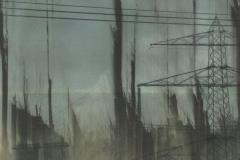 Kohle-Strom-und-Wald